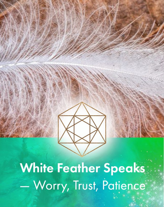 White Feather speaks about worry, trust and patience